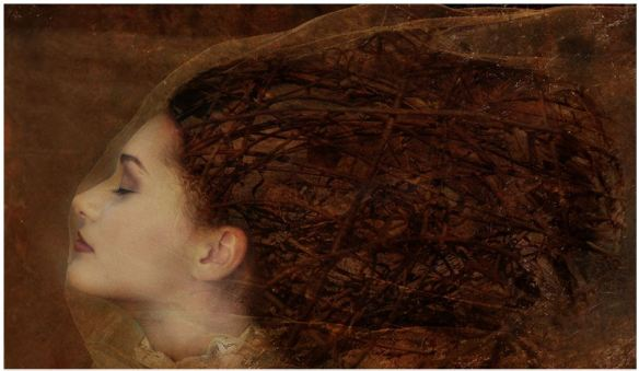 Behind the Veil_Thomas Dodd